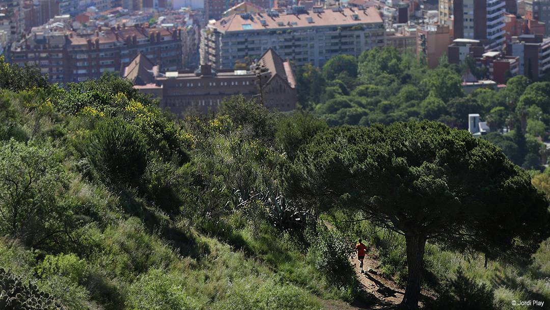 Collserola natural park is a protected area full of viewpoints, routes to follow, farmhouses and leisure areas. | Photo via barcelona.cat