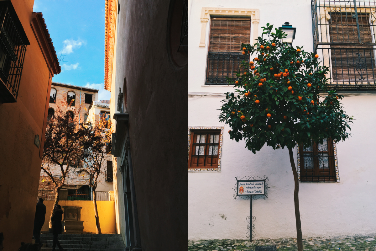 Going up the Albaicin: stairs and handsome old houses plus the ubiquitous orange trees around Granada, one of my favourite things.