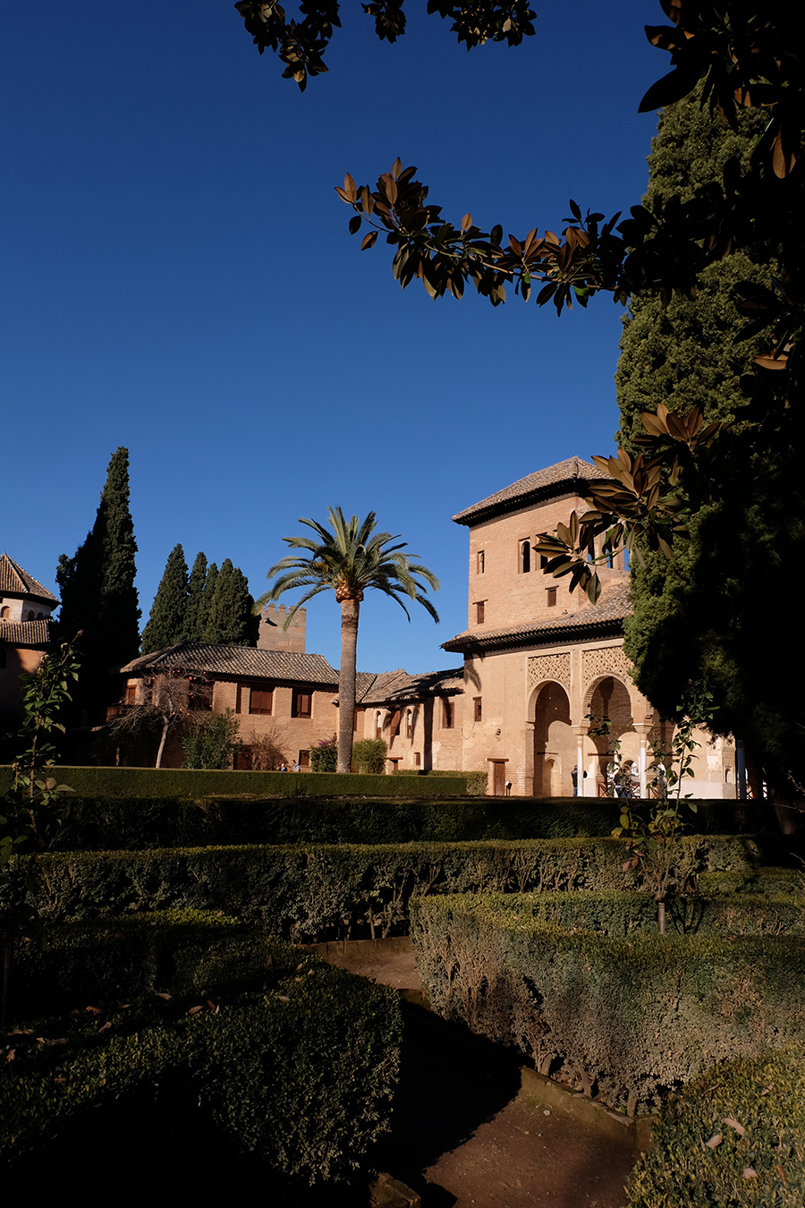 When you exit the Palace you enter The Partal, where a you can see an arched portico behind which stands the Tower of the Ladies and a large central pond. It's a beautiful and peaceful scenery. In the adjacent gardens they grow a variety of plants from flowers to chilies. The Partal was only included in the Alhambra a little more than a century ago.