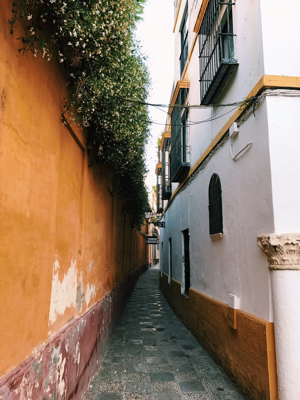 Lovely little streets and alleys of the Barrio Santa Cruz.