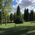 MADRID'S EL CAPRICHO PARK