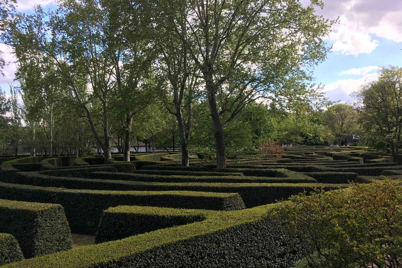 Tha maze!