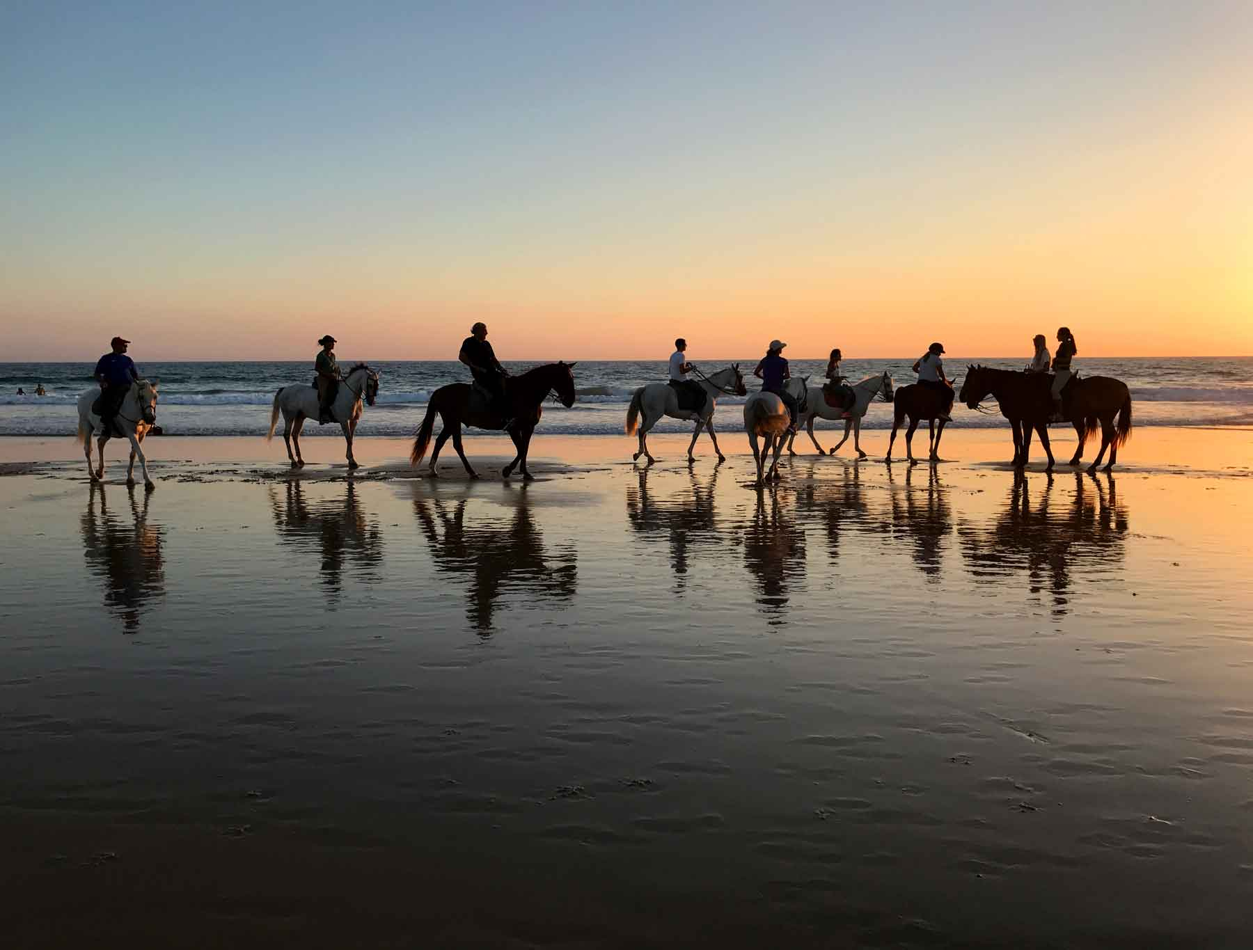 Yup, you can rent a horse to ride the beach at sunset... your own private Danielle Steel novel cover.