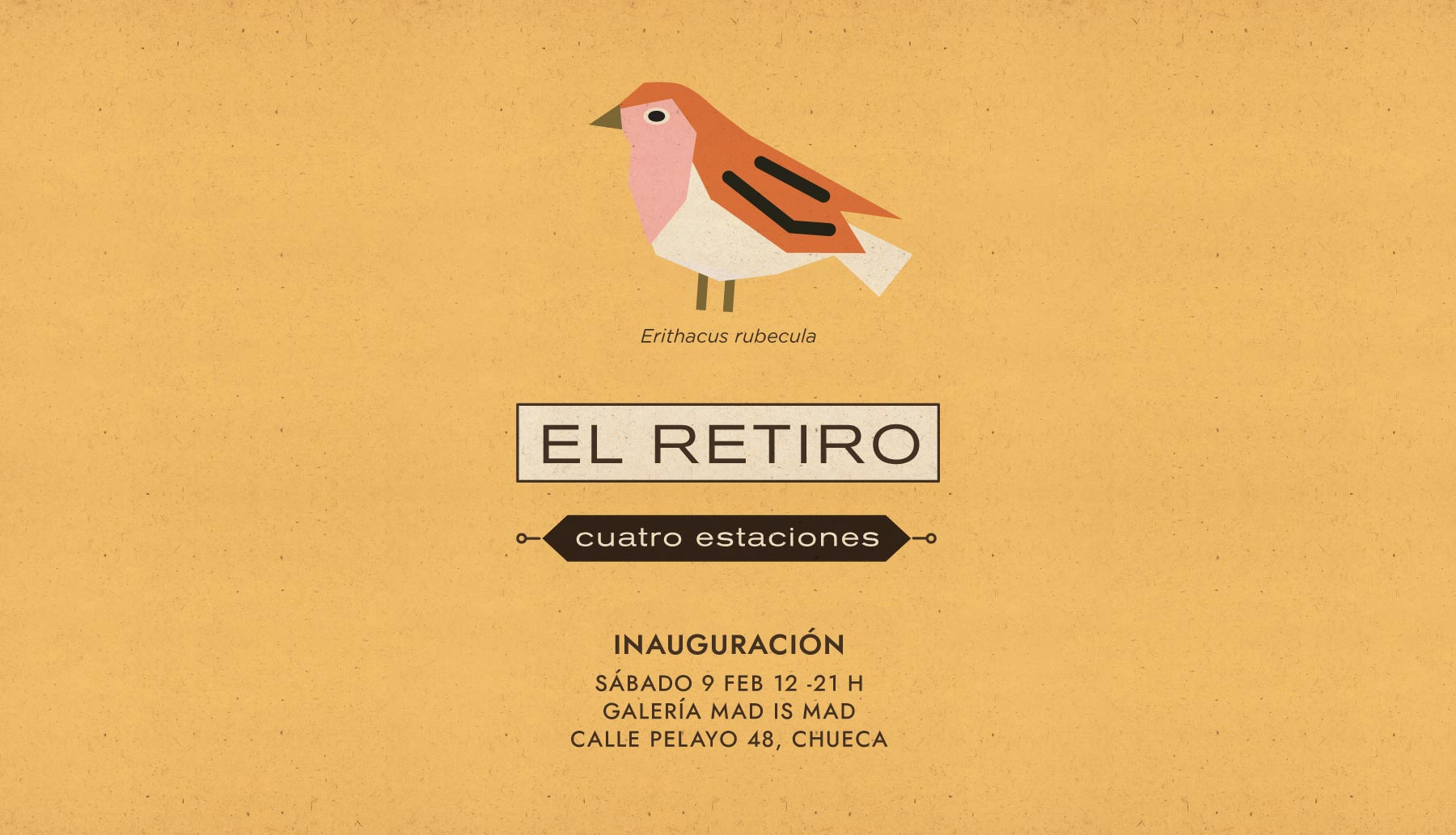 Cover-Expo-Textura