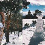 Let it snow! Una visita a la Sierra de Madrid